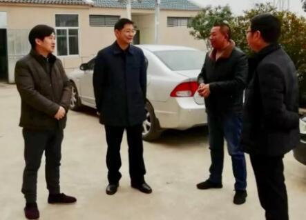 新洲区委书记赵利洪调研市科协对口帮扶点扶贫工作